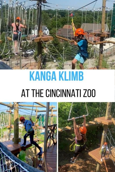 Kanga Klimb at the Cincinnati Zoo