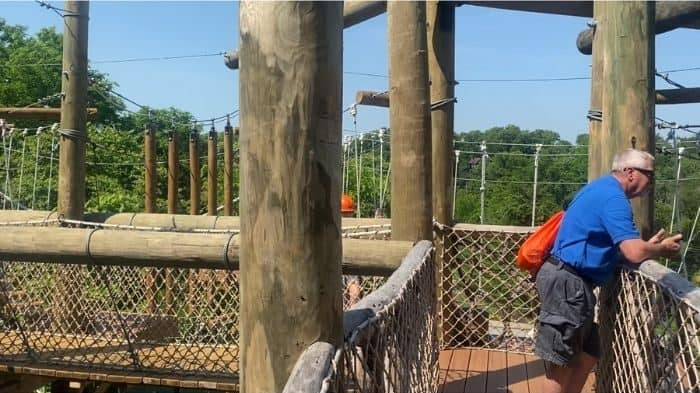 man at the observation area on the aerial adventure course at the Cincinnati Zoo
