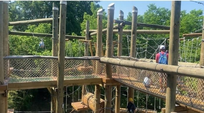 parent observing on the aerial adventure course at the Cincinnati Zoo
