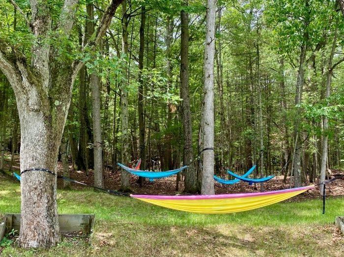 tree hammocks in the chill garden Muskegon
