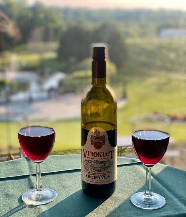 wine bottle and glasses of Vinoklet wine