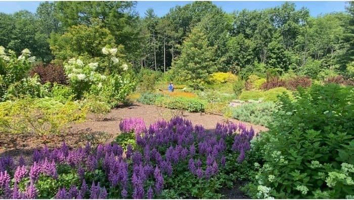 Holden- Arboretum- Ohio
