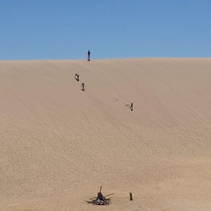 Kids -climbing-silver-lake-sand-dunes