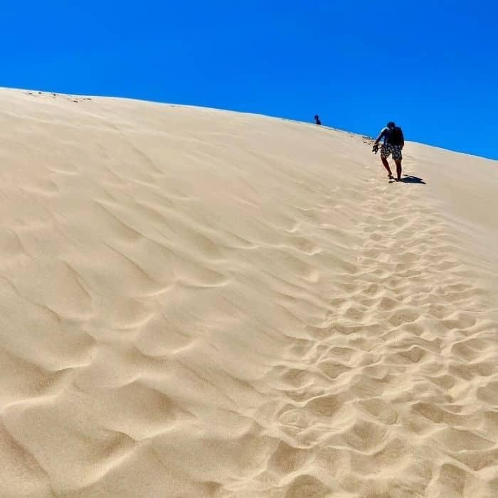 Silver Lake Sand Dunes in Michigan