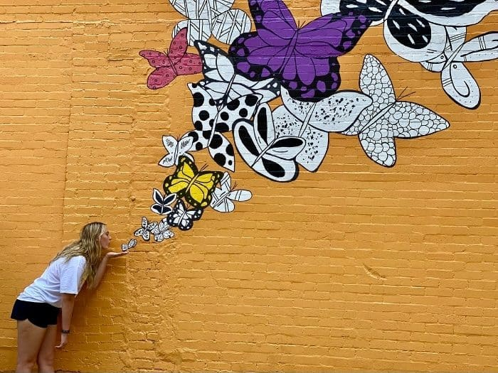 butterflies by Kelsey Montague