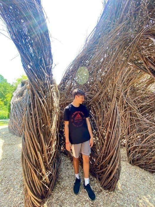 teenage boy at Holden Arboretum