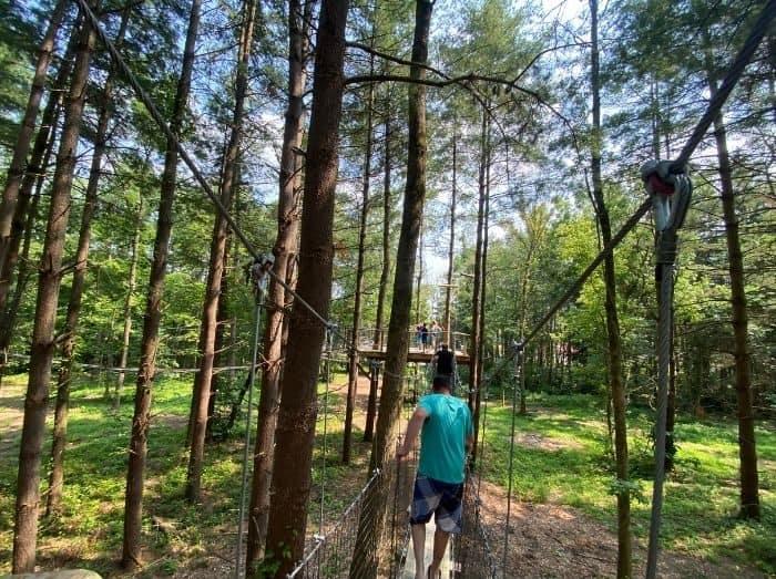 Canopy Walk at Kirkwood Adventure Park