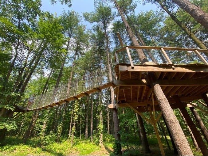 bridge for the Canopy Walk at Kirkwood Adventure Park