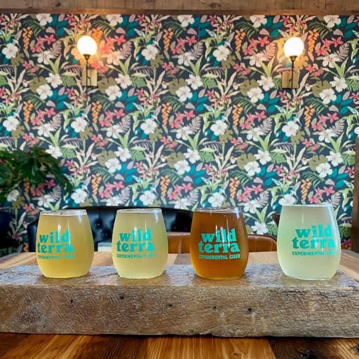 cider flight at Wild Terra cider bar