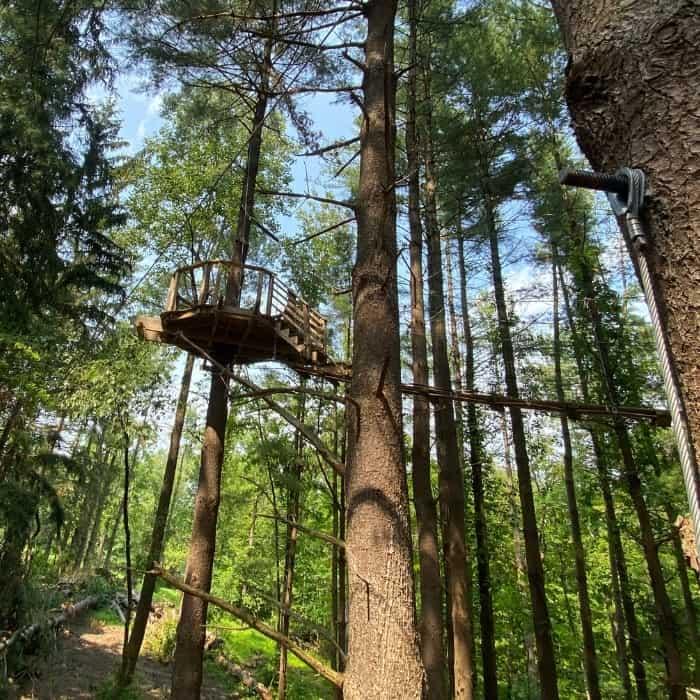 the Canopy Walk at Kirkwood Adventure Park