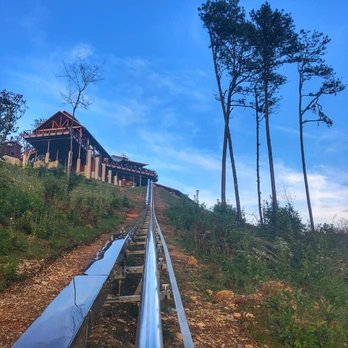 Rail runner mountain coaster at Anakeesta