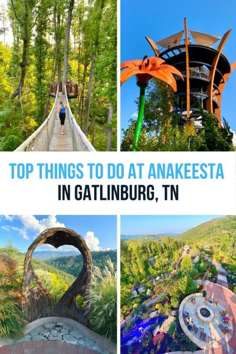 Top Things to Do at Anakeesta