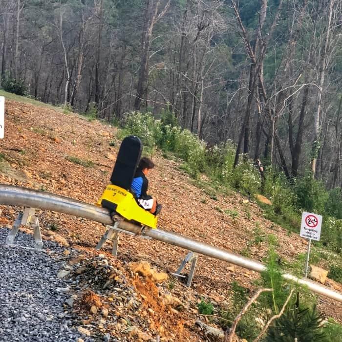 boy on Rail runner mountain coaster at Anakeesta