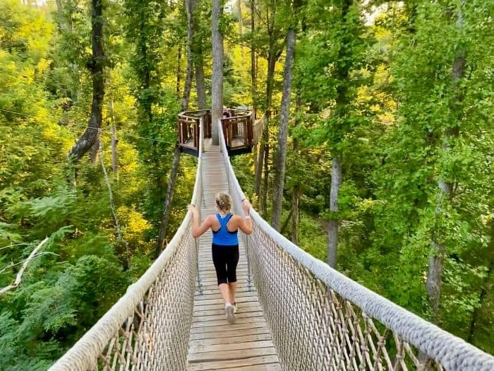 girl walking on Treetop Skywalk