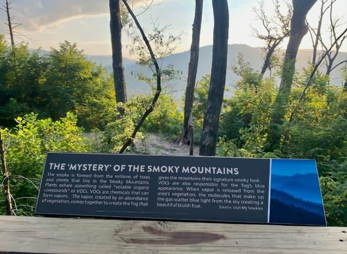 information marker on the Treetop Skywalk