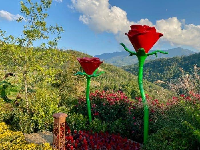 rose sculptures at Anakeesta